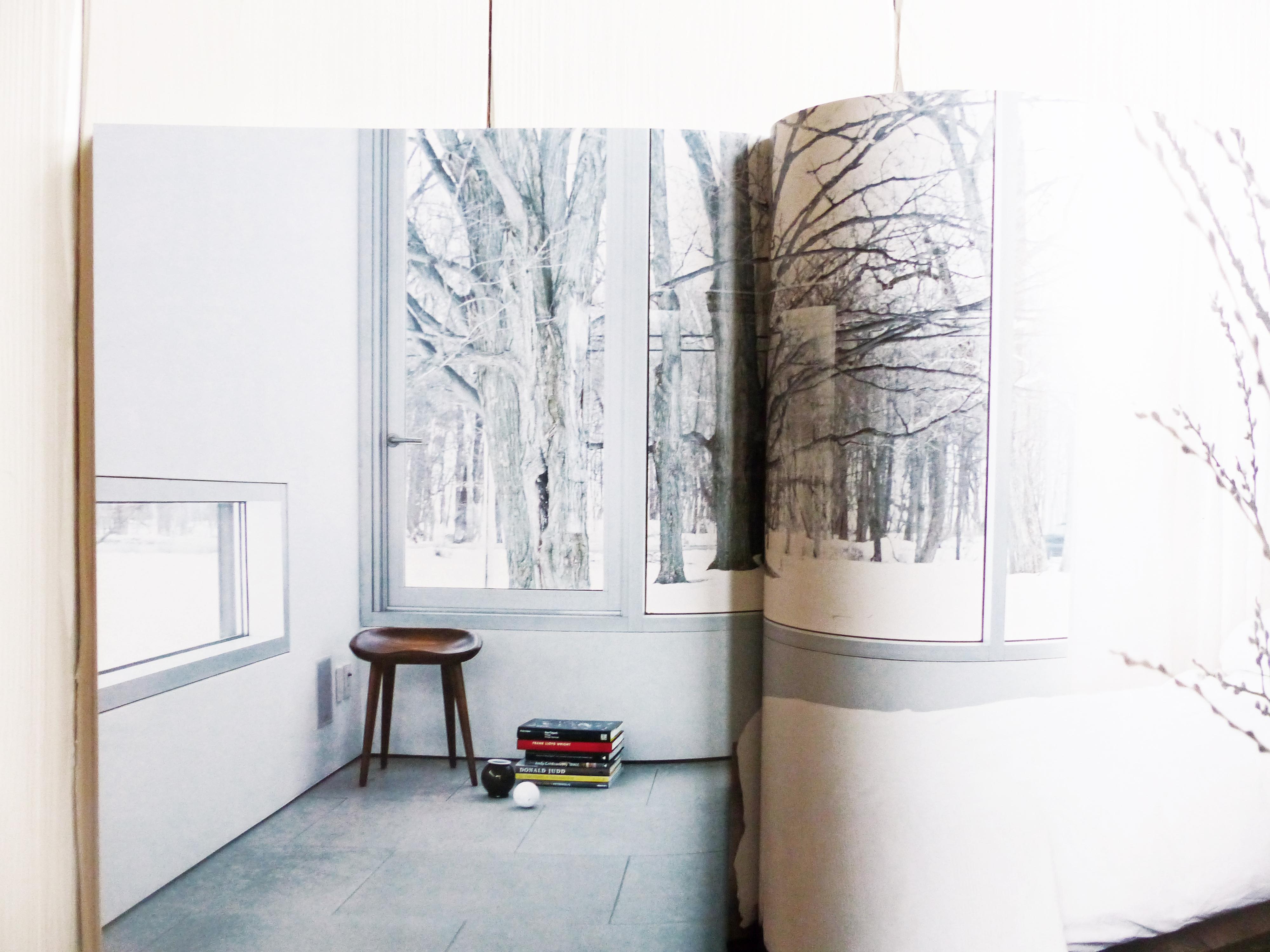 scandinavian modern home